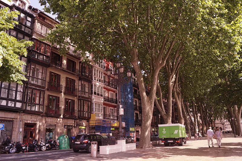 Houses in Bilbao under some of the many giant planes (platanus trees). These buildings could not be complete without the so-called oriel windows (similar to the concept of the bay windows, but starting from the second floor only) dominating the facades all around the city.